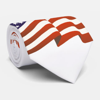 USA Flag   Celebrate Independence Day Tie