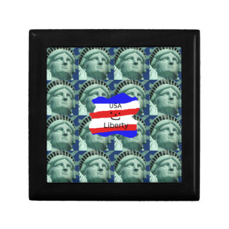 USA Flag Colors With Statue Of Liberty Gift Box