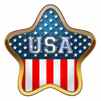 USA Flag Photo Sculpture Magnet