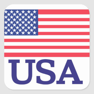 USA Flag Square Sticker