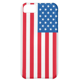 USA Flag stars and stripes iPhone 5C Case