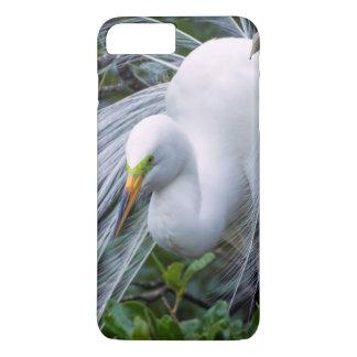 USA, Florida, Anastasia Island, Alligator Farm iPhone 7 Plus Case