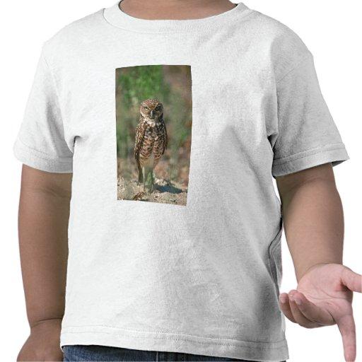 USA, Florida, Burrowing Owl. 2 T-shirt