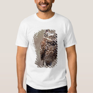 USA, Florida, Burrowing Owl. Tee Shirts