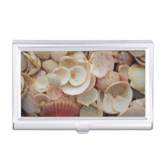 USA, Florida. Close Up Of Shells On Santa Rosa Business Card Cases