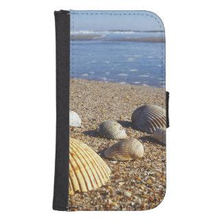 USA, Florida, Coastal Sea Shells Samsung S4 Wallet Case