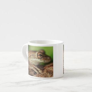 USA, Florida, Cuban Tree Frog. Espresso Mug
