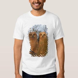 USA, Florida, De Soto. Great horned owlets sit Shirts