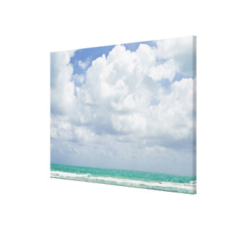 USA, Florida, Miami, Landscape with sea Canvas Print