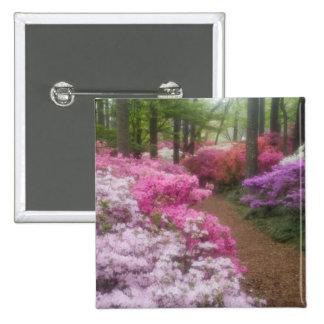 USA; Georgia; Pine Mountain. Azaleas at 2 15 Cm Square Badge