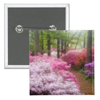 USA; Georgia; Pine Mountain. Azaleas at Pin