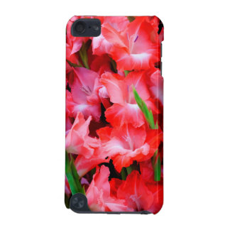 USA, Georgia, Savannah, Bouquet Of Gladiolus iPod Touch 5G Covers