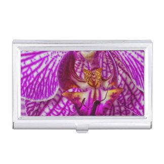 USA, Georgia, Savannah, Close-Up Of Orchid Business Card Case