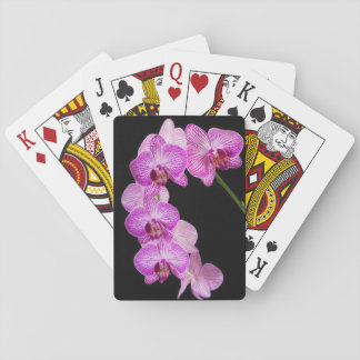 USA, Georgia, Savannah, Cluster Of Orchids 2 Playing Cards