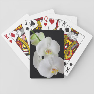 USA, Georgia, Savannah, Cluster Of Orchids Playing Cards