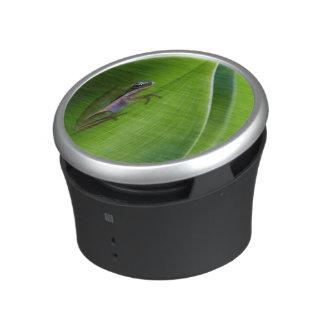 USA, Georgia, Savannah, Tiny Frog On A Leaf Bluetooth Speaker
