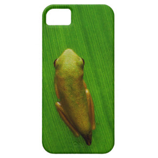 USA, Georgia, Savannah, Tiny Frog On Leaf Barely There iPhone 5 Case