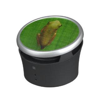 USA, Georgia, Savannah, Tiny Frog On Leaf Speaker