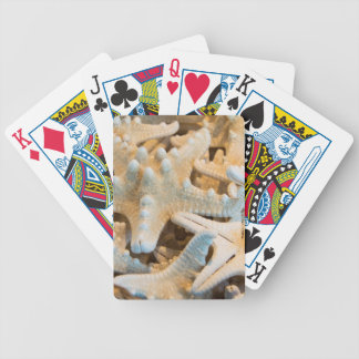 USA, Hawaii, Big Island. Kona Bicycle Playing Cards