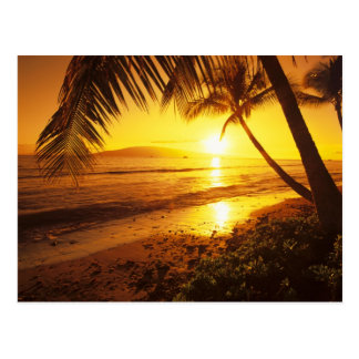 USA, Hawaii, Maui, Colorful sunset in a 2 Postcard