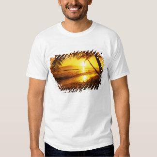 USA, Hawaii, Maui, Colorful sunset in a 2 T-shirts