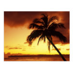 USA, Hawaii, Maui, Colourful sunset in a