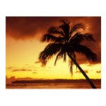 USA, Hawaii, Maui, Colourful sunset in a Post Cards
