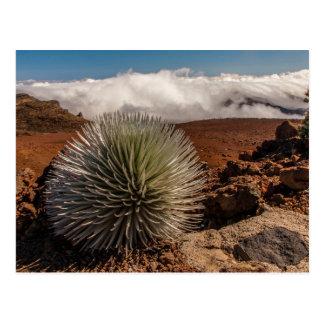 USA, Hawaii, Maui, Haleakala National Park Postcard