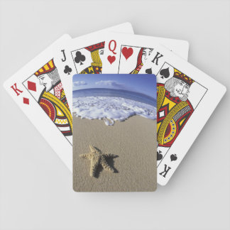 USA, Hawaii, Maui, Makena Beach, Starfish and Playing Cards