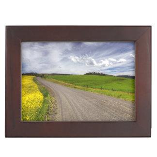 USA, Idaho, Idaho County, Canola Field Memory Boxes