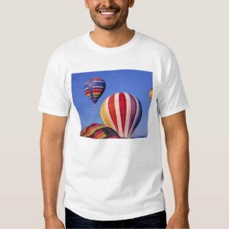 USA, Idaho, Teton Valley. Colorful hot-air T Shirt