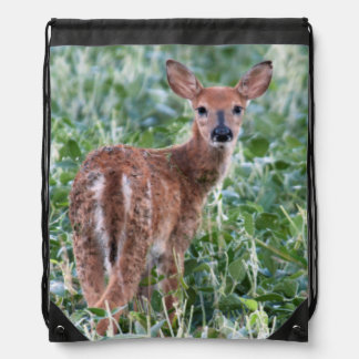 USA, Kansas, Small Whitetail Deer Backpacks