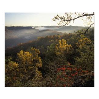 USA, Kentucky. Daniel Boone National Forest. Photo Art