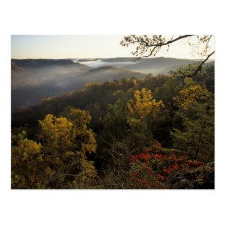 USA, Kentucky. Daniel Boone National Forest. Postcard