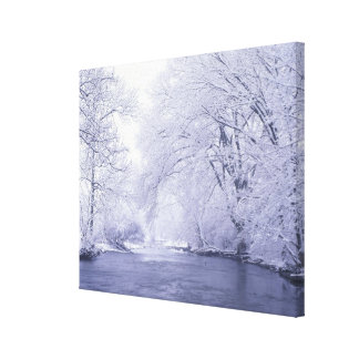USA, Kentucky, Louisville. Snow covered Gallery Wrapped Canvas
