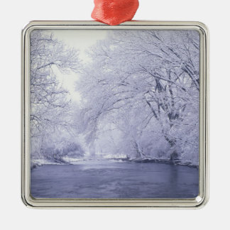 USA, Kentucky, Louisville. Snow covered Silver-Colored Square Decoration
