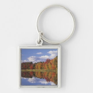 USA, Massachusetts, Acton. Reflection of autumn Silver-Colored Square Key Ring