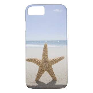 USA, Massachusetts, Cape Cod, Nantucket, close iPhone 8/7 Case