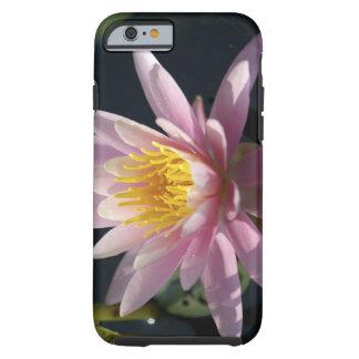 USA, Massachusetts, Great Barrington, lily pad Tough iPhone 6 Case