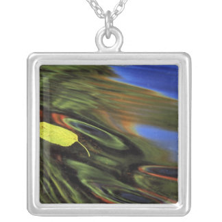 USA, Michigan, Birch leaf in river with autumn Square Pendant Necklace