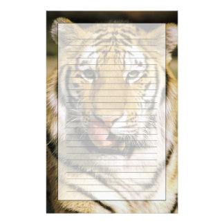 USA, Michigan, Detroit. Detroit Zoo, tiger Stationery Design
