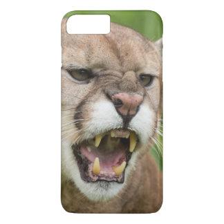 USA, Minnesota, Sandstone, Minnesota Wildlife 12 iPhone 7 Plus Case