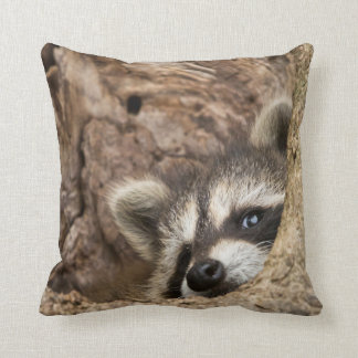 USA, Minnesota, Sandstone, Minnesota Wildlife 3 Cushion