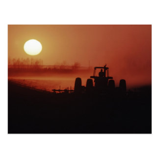 USA, Mississippi, disking cotton field Postcard