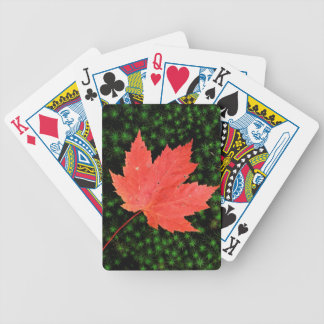 USA, Missouri, Mark Twain National Forest Bicycle Poker Cards