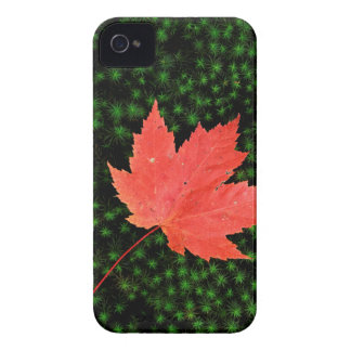 USA, Missouri, Mark Twain National Forest Case-Mate iPhone 4 Cases