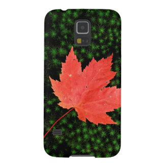 USA, Missouri, Mark Twain National Forest Cases For Galaxy S5