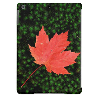 USA, Missouri, Mark Twain National Forest Cover For iPad Air