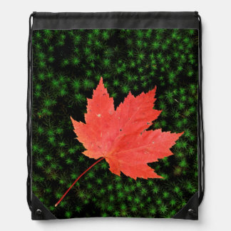 USA, Missouri, Mark Twain National Forest Drawstring Bag
