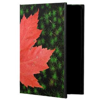 USA, Missouri, Mark Twain National Forest iPad Air Cases